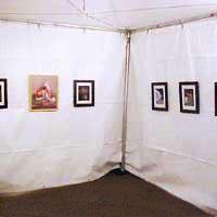 display 3